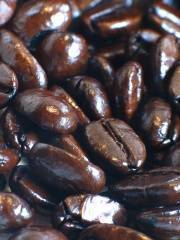La cafeína ayuda a prevenir el alzheimer