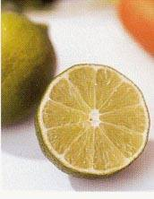 comidas para la gota niveles normales de acido urico en embarazadas acido urico alto en la orina en ninos