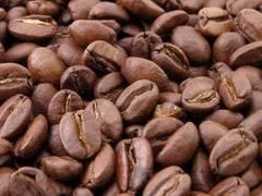 El cultivo de café orgánico