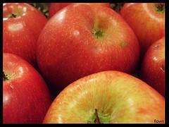 Cultivo de frutas ecológicas