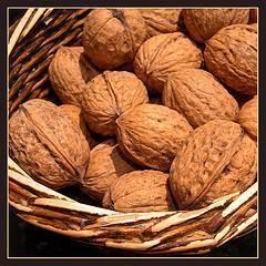 Nueces para engordar