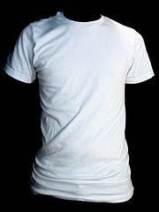 Ejercicios para tonificar abdomen y espalda