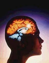 Inteligencia emocional y autodominio