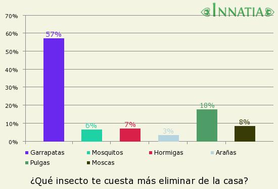 Como eliminar garrapatas en casa con productos naturales - Eliminar aranas en casa ...