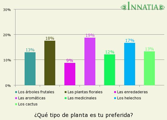 Planta de jade crassula ovata aprende c mo cultivarla y for Tipos de arboles para plantar en casa