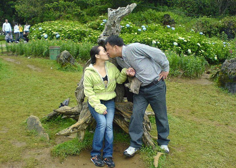 Frases Graciosas De Amor Para Día De Los Enamorados O