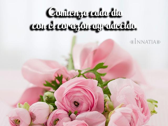 Imágenes Con Frases De Buenos Días Gratis Para Descargar Innatiacom
