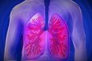 Imagen de pulmones 2
