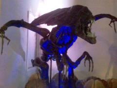 pelicula alien