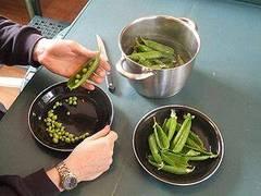 C mo cocinar los guisantes 10 recetas con guisantes for Cocinar guisantes frescos