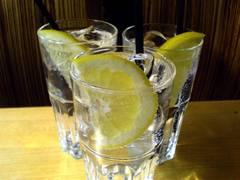 Como preparar un buen gin tonic