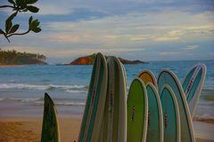 Tipos de tabla de surf