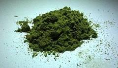 Polvo de té verde