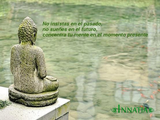 40 Frases de Buda y pensamientos budistas - Innatia.com