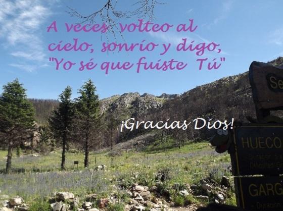 Imágenes De Agradecimiento A Dios Innatiacom