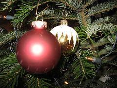 Imagenes Graciosas Para Felicitar Navidad.Frases De Felicitacion Para La Navidad Frases De Navidad