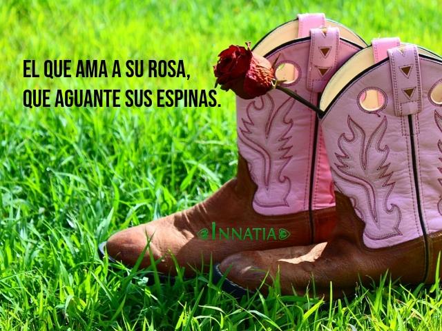 Imágenes Con Frases Vaqueras De Amor De Mujeres De ánimo Y