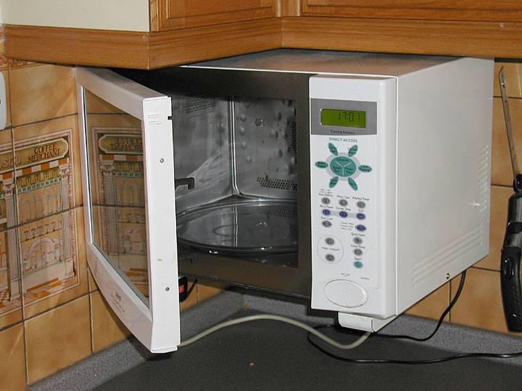 Qu cocinar en el microondas c mo cocinar con microondas - Cocinando con microondas ...