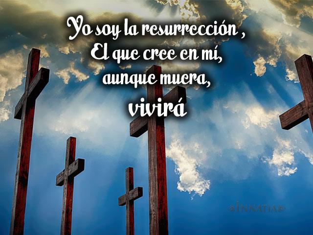 Frase Jesus4