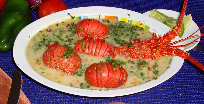 C mo cocinar una langosta congelada en casa Cocinar ortigas de mar