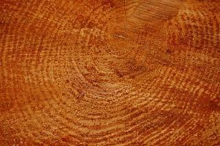 4 Trucos para limpiar muebles de madera :: Consejos fáciles para que tus mueb...