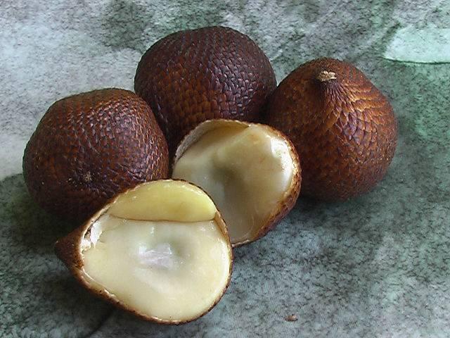 El salak, la fruta con piel de serpiente - Innatia.com