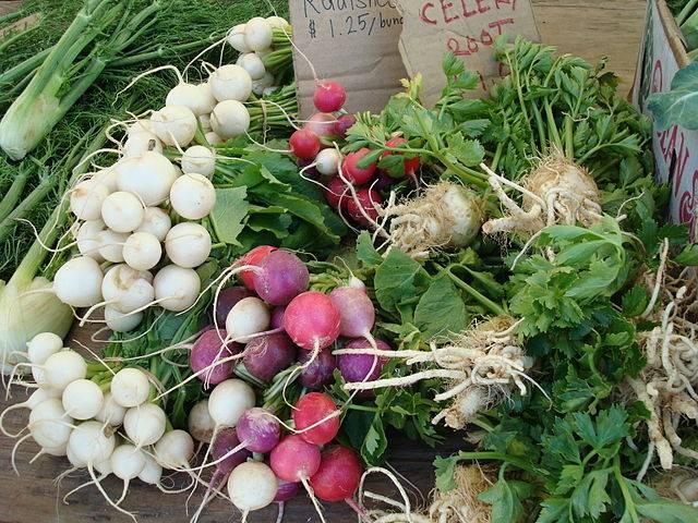Verduras organicas